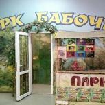 Парк Бабочек, Челябинск