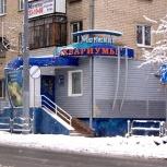 Установка, обслуживание, ремонт любых аквариумов, Челябинск