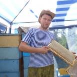 Липовый мёд сбор июль 2018г., Челябинск