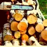Дрова березовые колотые или пеньками с доставкой, Челябинск