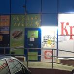 Продам рыбный магазин, Челябинск