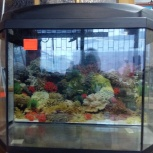 Изготовление аквариумов, террариумов, Челябинск