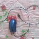 компьютерная мышь, Челябинск