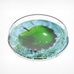 Монетница круглая ronda, диаметр 172мм, высота 24мм, Челябинск