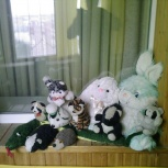Мягкие игрушки одиннадцать видов животных, Челябинск