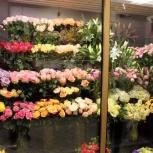 Цветочный бизнес, сеть магазинов., Челябинск