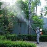 Обработка от насекомых - вредителей, клещей, блох, клопов, Челябинск