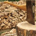 Доставлю колотые дрова - любой объем, Челябинск