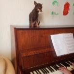Обучение игре на фортепиано, Челябинск