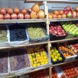 Торговый павильон овощи и фрукты, сухофрукты, Челябинск