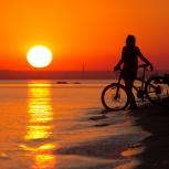 Куплю велосипед  trek, Челябинск