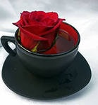 """Чай(сбор трав) специальный, против простуд """"Чай для холодной погоды"""", Челябинск"""