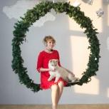 Фотосессия с щенками Сибирской Хаски и не только, Челябинск