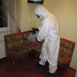 городская санитарная служба уничтожение блох, Челябинск