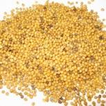 Семя горчицы, Челябинск