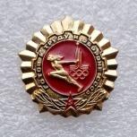Знак Г.Т.О. Золотой Москва Олимпиада 80, Челябинск