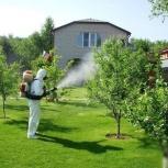 Обработка от клещей / защита деревьев от вредителей, Челябинск