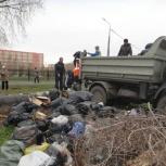 Спил, кронирование деревьев. Выкорчевывание пней., Челябинск