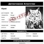 Частный детектив, Челябинск