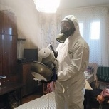 Уничтожение насекомых,и вирусов:дезинфекция-дезинсекция, Челябинск