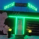 Цветочный павильон, Челябинск