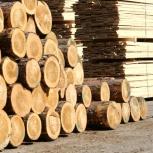 Деревообрабатывающее предприятие лесопилка пилорама, Челябинск
