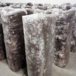 Грибные блоки для выращивания грибов Вешенка, Челябинск