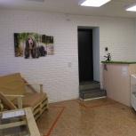 Продам действующий груминг-салон, Челябинск