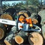 Спил-распил деревьев, Челябинск