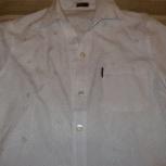 Рубашка летняя р.56 с кор. рукавом, Челябинск
