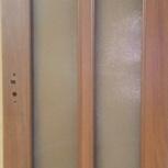 Дверь до 019 стекло кризет, Челябинск
