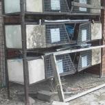 Клетки для кролика, Челябинск