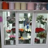 Продам цветочный бизнес, Челябинск