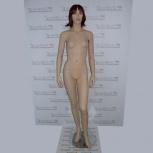 Манекен женский 183,5см, jl-4g, Челябинск