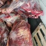 мясо говядина, Челябинск