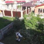Покос травы в Челябинске, Челябинск