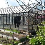 Демонтаж теплиц, Челябинск
