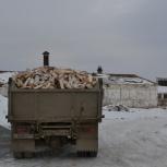 Дрова березовые колотые Зил 5м3, Челябинск