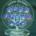 Фоторамка специальная- дерево, Челябинск