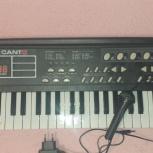 синтезатор CANTO HL-3829 с микрофоном, Челябинск