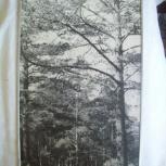 Картина - фотопейзаж ( в алюминиевой рамке) С.С.С.Р. -35 см./ 60 см., Челябинск